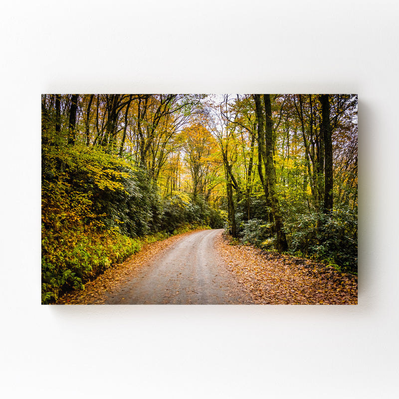Blue Ridge Parkway Autumn Canvas Art Print