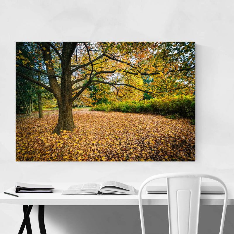 Fall Autumn Leaves Forest Nature Metal Art Print
