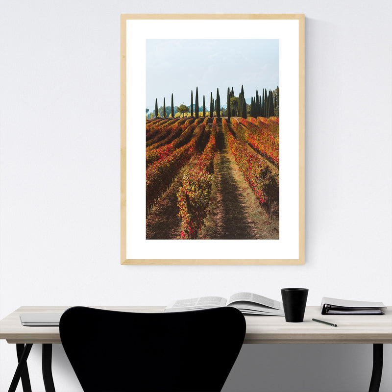 Tuscany Italy Vineyard Nature Framed Art Print