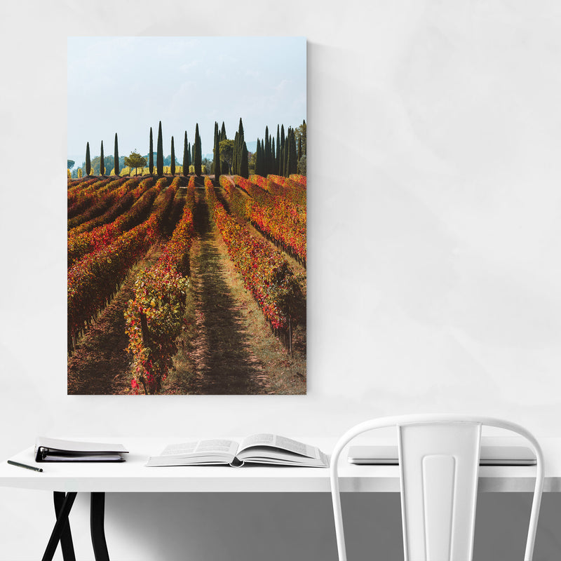 Tuscany Italy Vineyard Nature Canvas Art Print