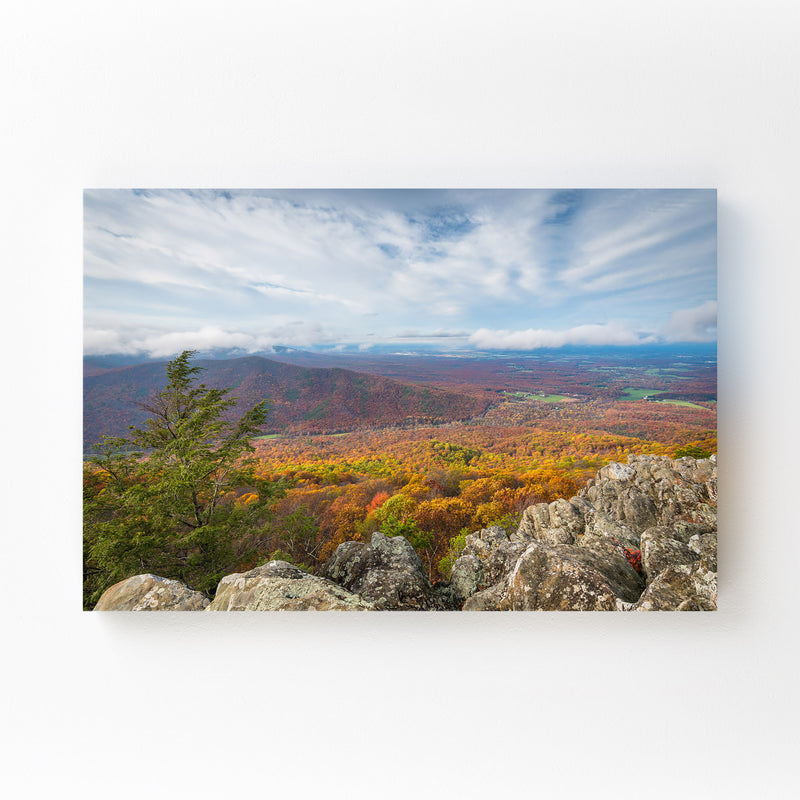 Virginia Blue Ridge Autumn Fall Canvas Art Print