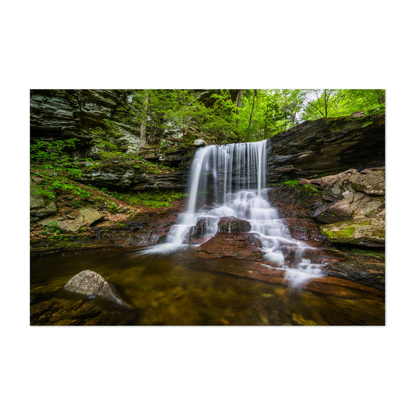 Ricketts Glen Waterfall Forest Nature Art Print