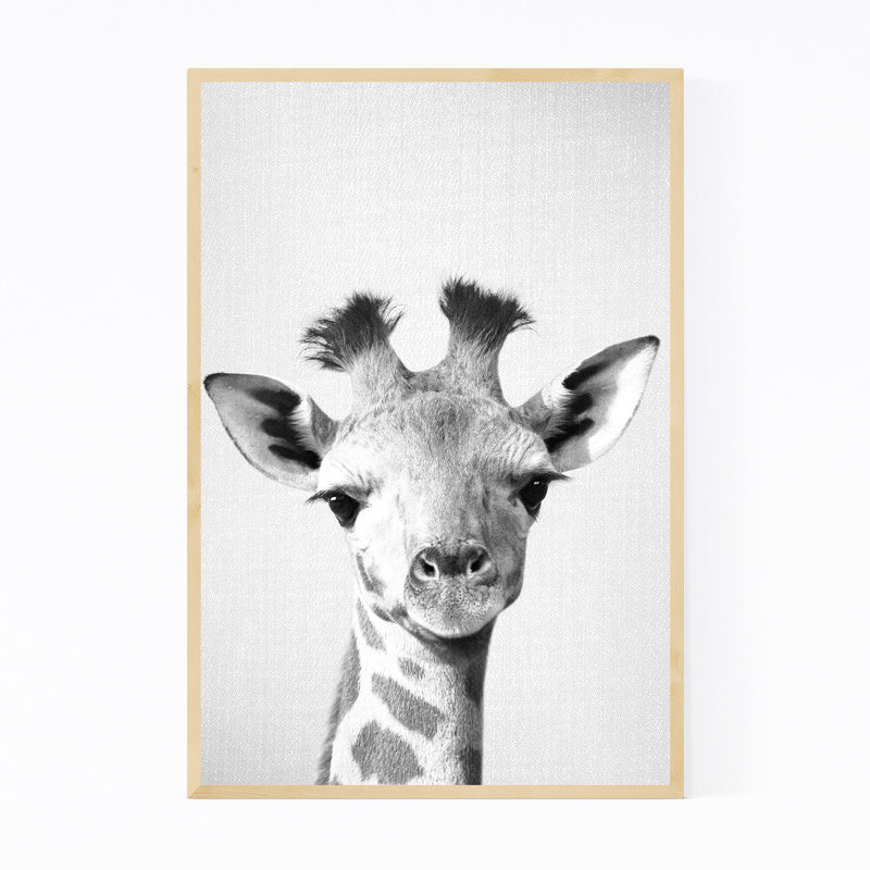 Baby Giraffe Peekaboo Animal Framed Art Print
