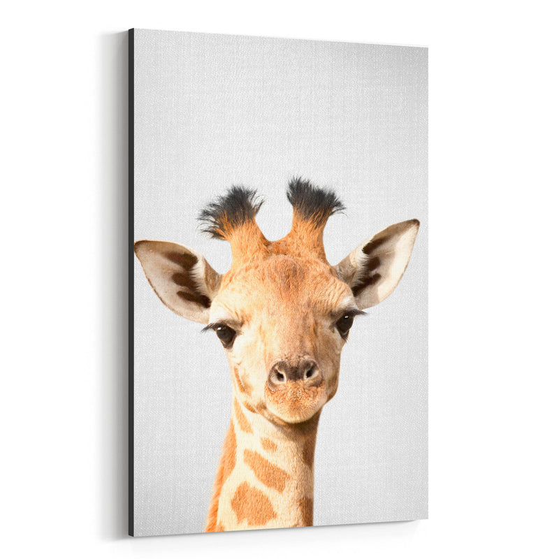 Baby Giraffe Peekaboo Animal Canvas Art Print