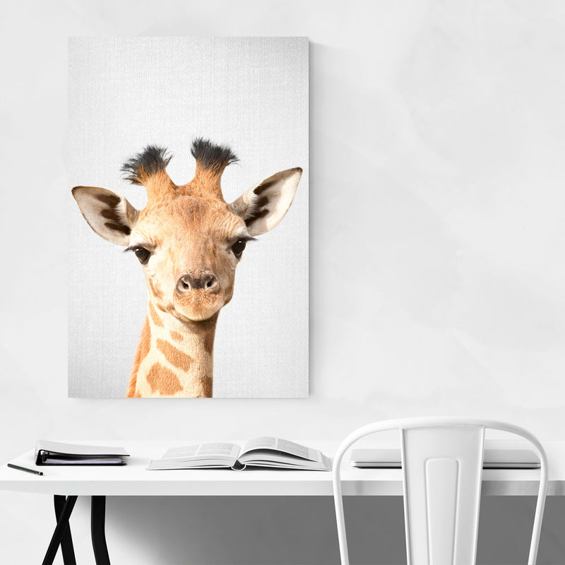 Baby Giraffe Peekaboo Animal Art Print