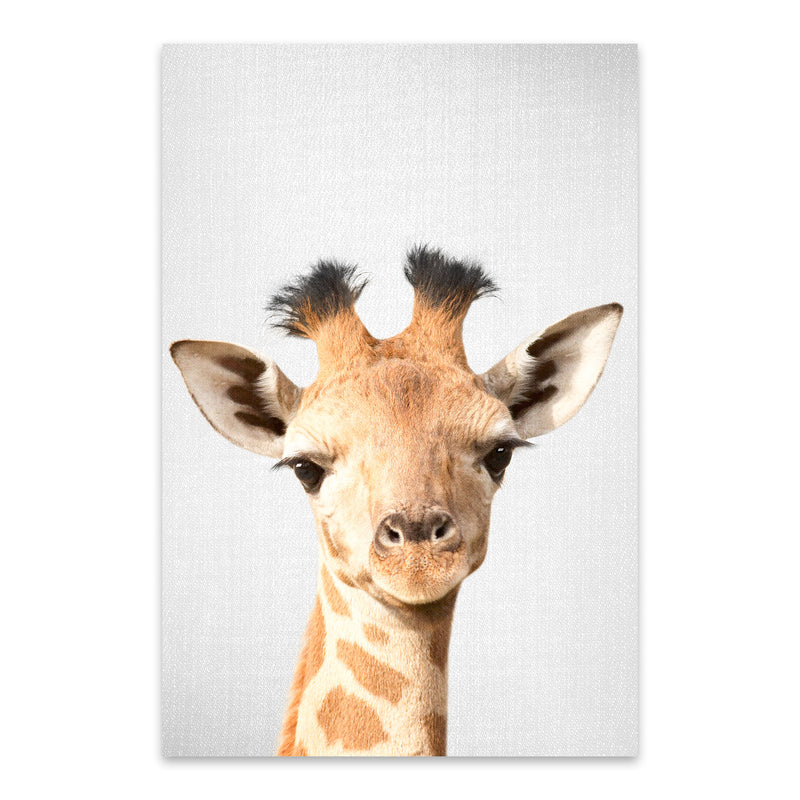 Baby Giraffe Peekaboo Animal Metal Art Print