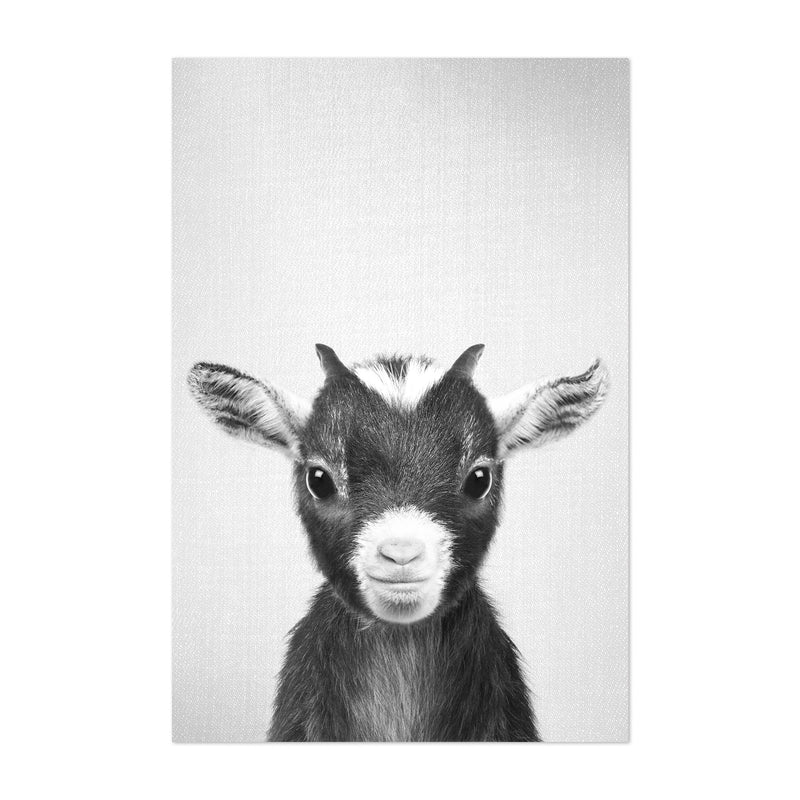 Cute Baby Goat Peekaboo Animal Art Print