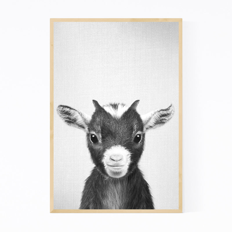 Cute Baby Goat Peekaboo Animal Framed Art Print