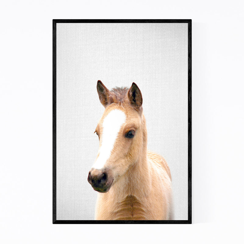 Cute Baby Horse Peekaboo Animal Framed Art Print