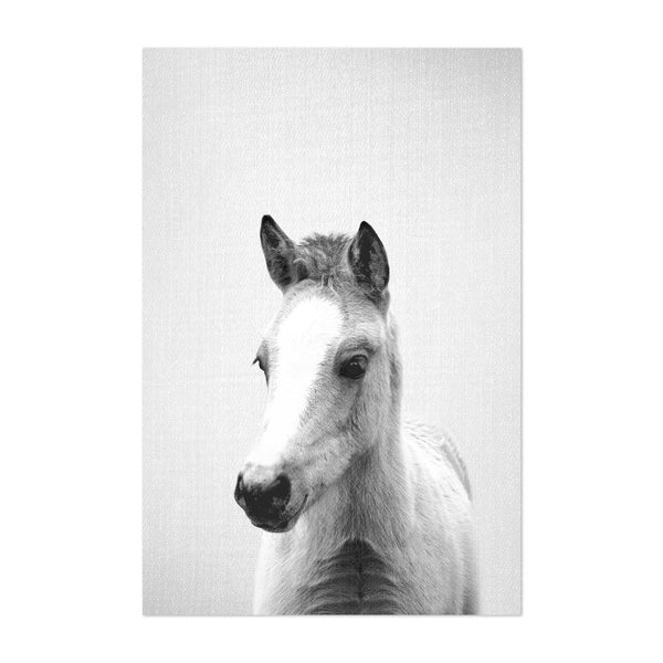 Cute Baby Pony Peekaboo Animal Art Print