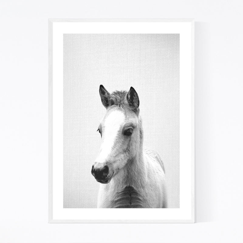 Cute Baby Pony Peekaboo Animal Framed Art Print