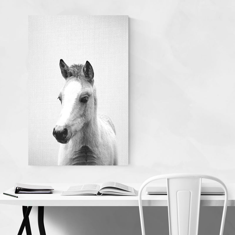 Cute Baby Pony Peekaboo Animal Metal Art Print