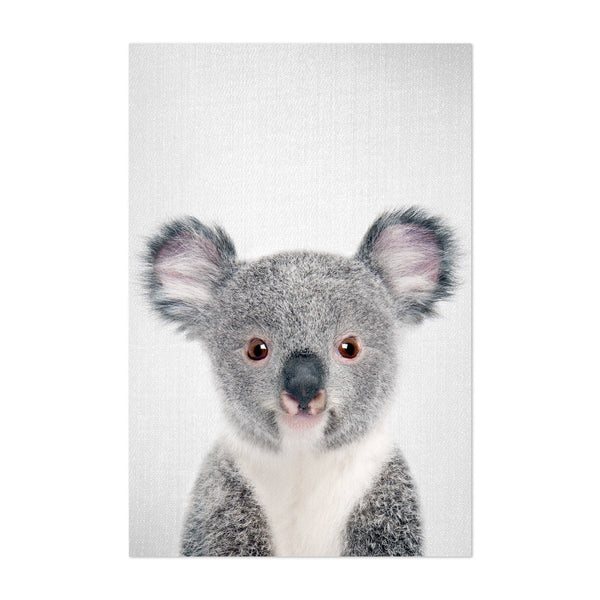 Cute Baby Koala Peekaboo Animal Art Print
