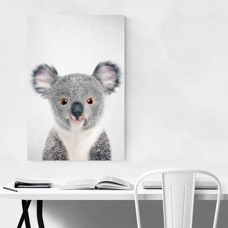 Cute Baby Koala Peekaboo Animal Canvas Art Print