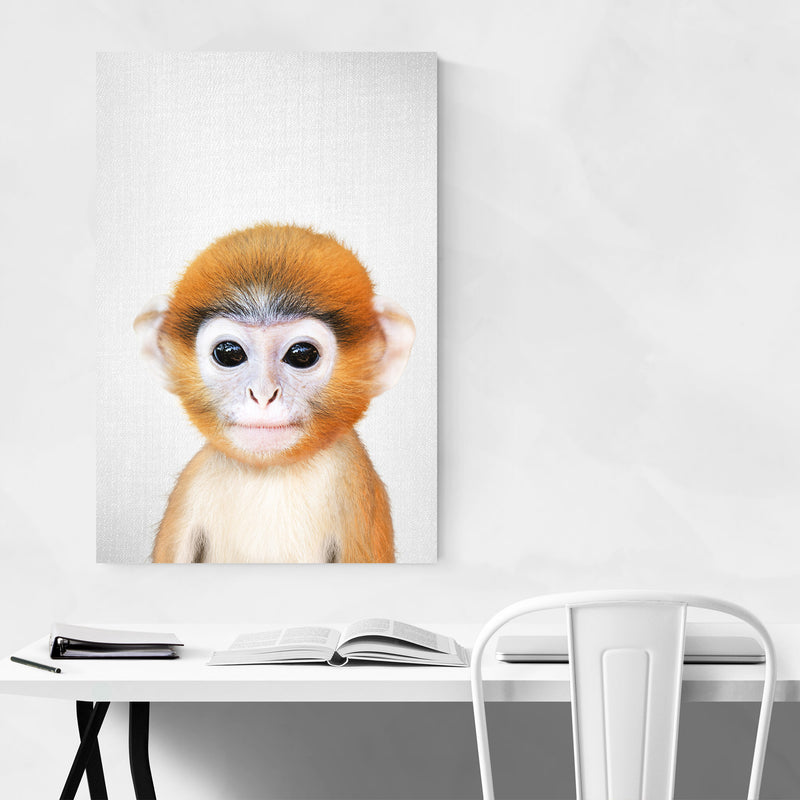 Cute Baby Monkey Peekaboo Animal Canvas Art Print