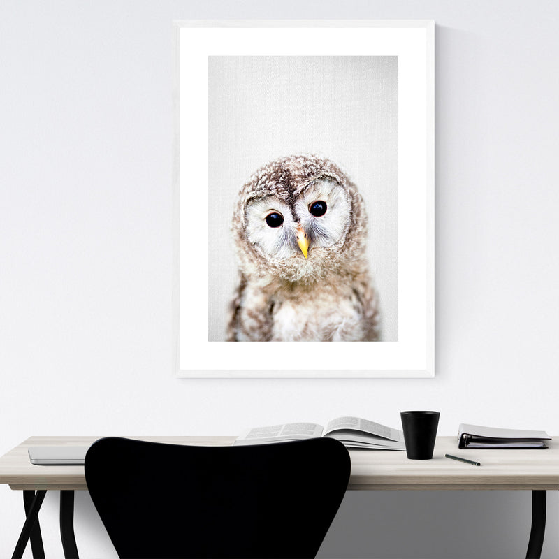 Baby Owl Peekaboo Nursery Animal Framed Art Print