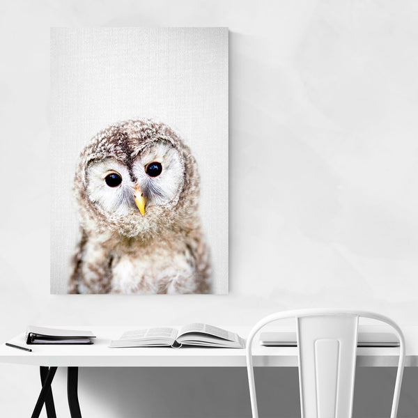 Baby Owl Peekaboo Nursery Animal Art Print