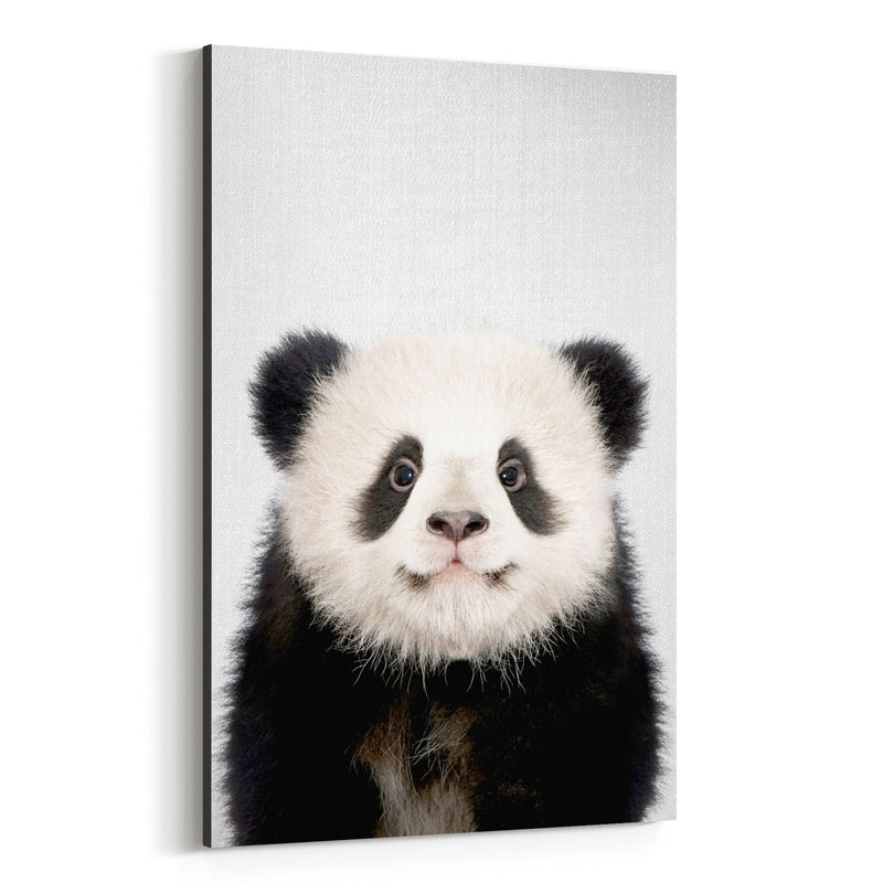 Cute Baby Panda Peekaboo Animal Canvas Art Print