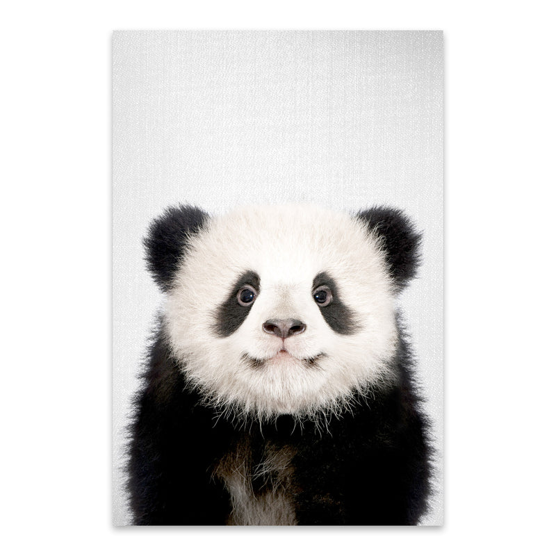 Cute Baby Panda Peekaboo Animal Metal Art Print