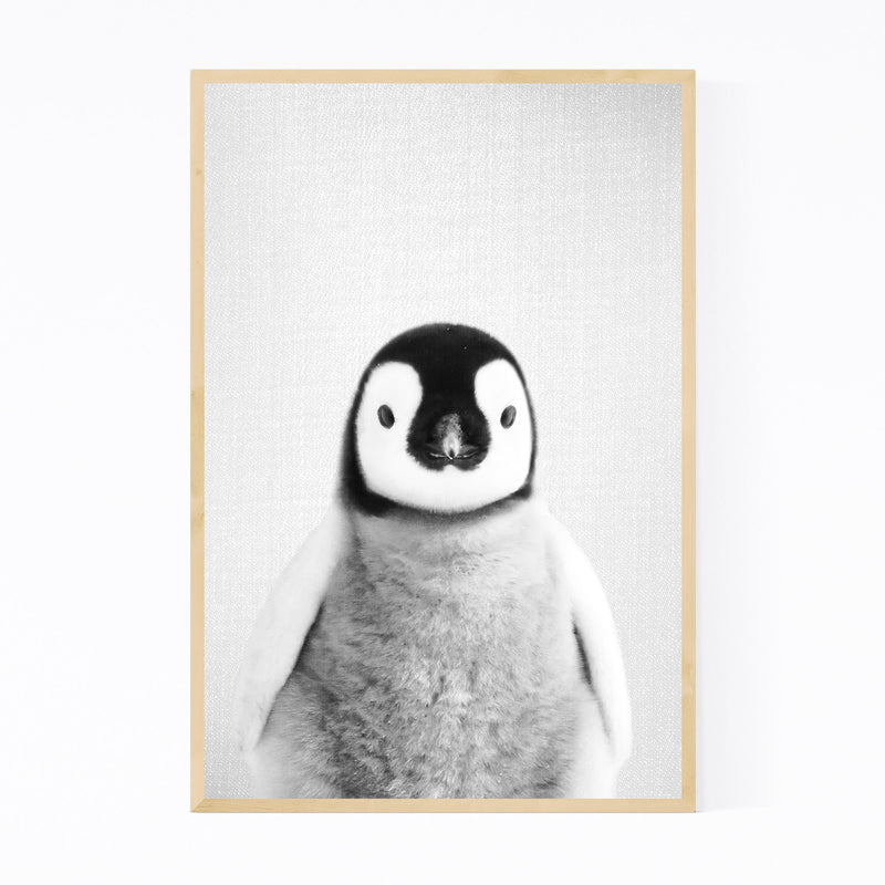 Baby Penguin Peekaboo Animal Framed Art Print