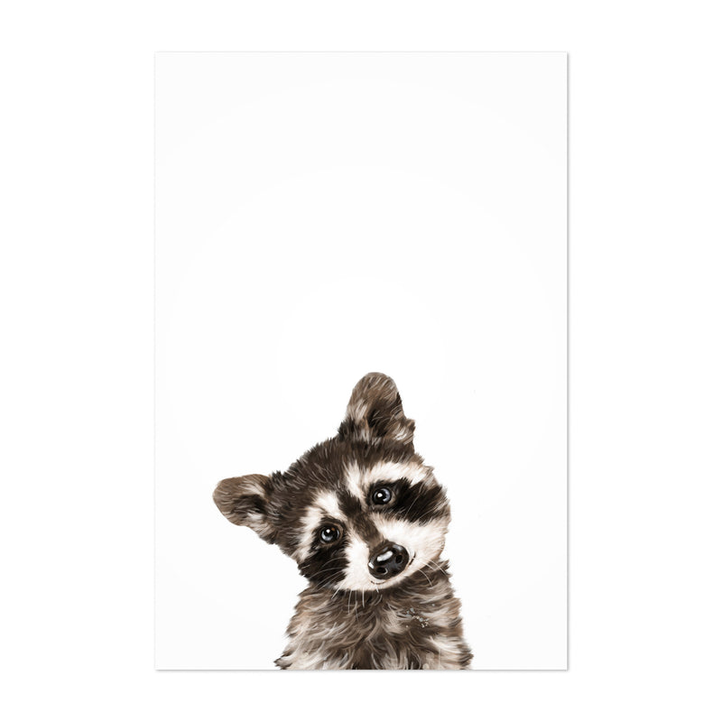 Baby Raccoon Peekaboo Animal Art Print