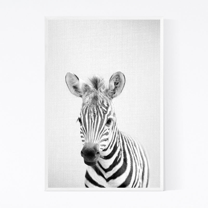 Cute Baby Zebra Peekaboo Animal Framed Art Print