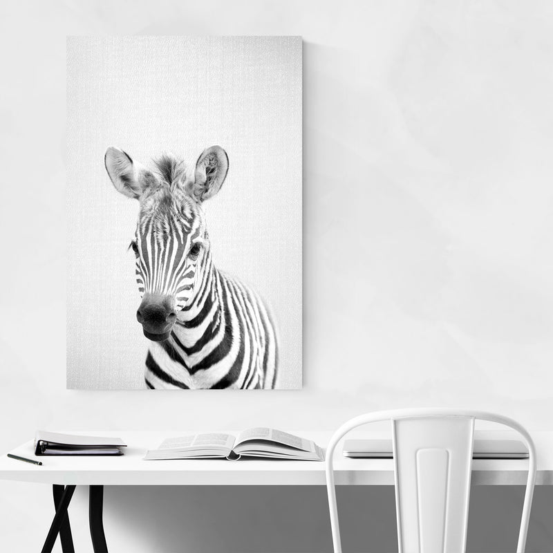 Cute Baby Zebra Peekaboo Animal Metal Art Print