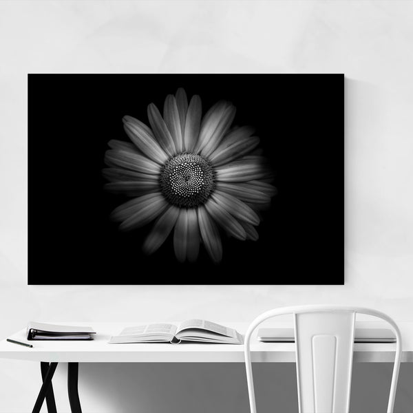 Black & White Flowers Nature Art Print