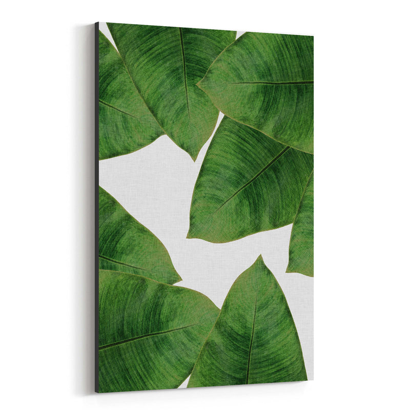 Tropical Banana Leaf Botanical  Canvas Art Print