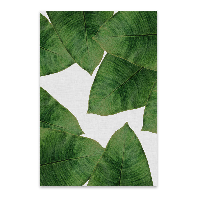 Tropical Banana Leaf Botanical  Metal Art Print