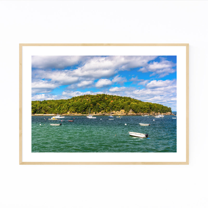 Bar Harbor Acadia Maine Nature Framed Art Print