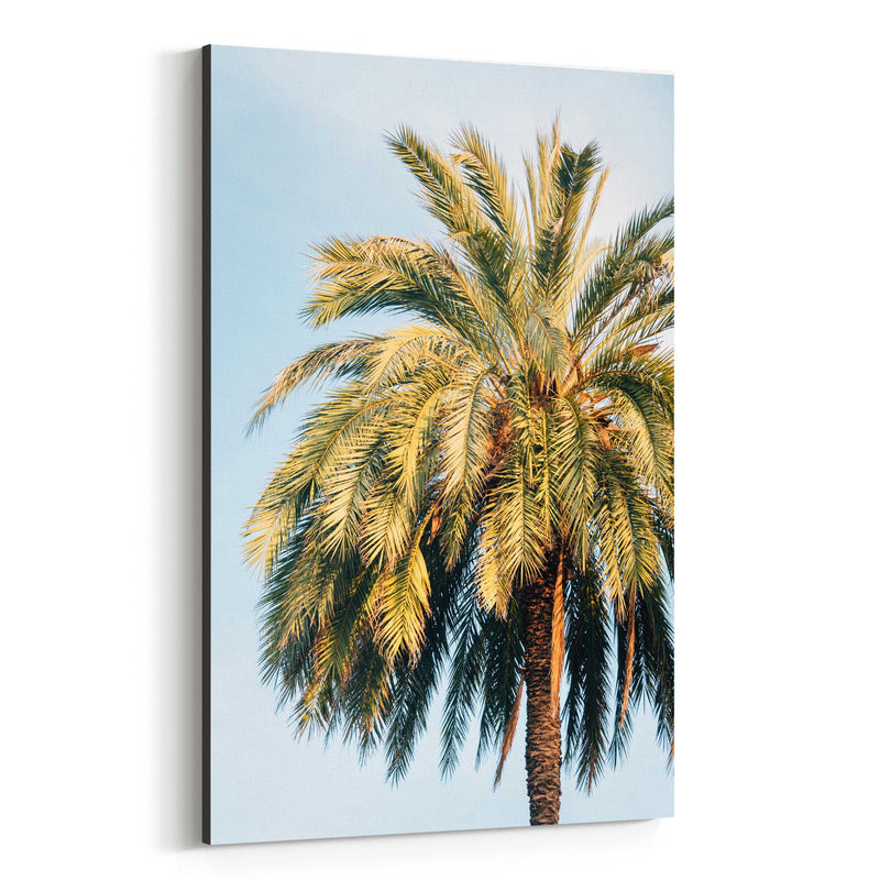Beach Palm Trees Barcelona Spain Canvas Art Print