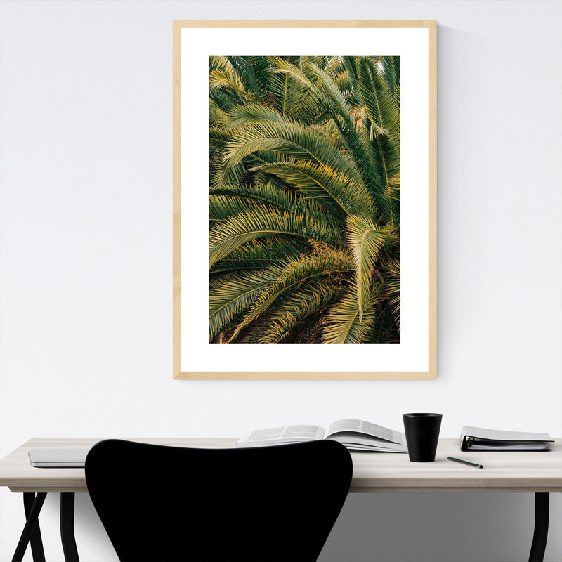 Beach Palm Trees Barcelona Spain Framed Art Print