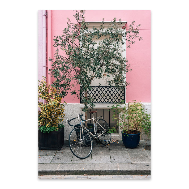 Bike Pink House Paris France Metal Art Print