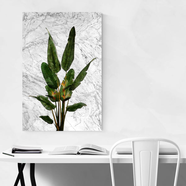 Bird of Paradise Plant Botanical Art Print