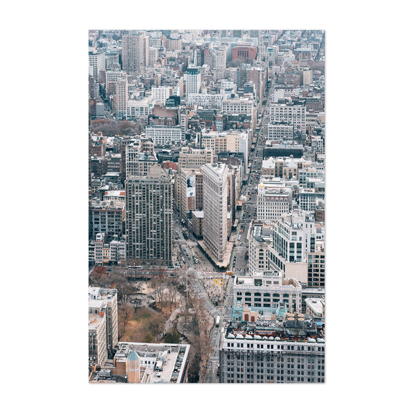 Flatiron View New York City NYC Art Print