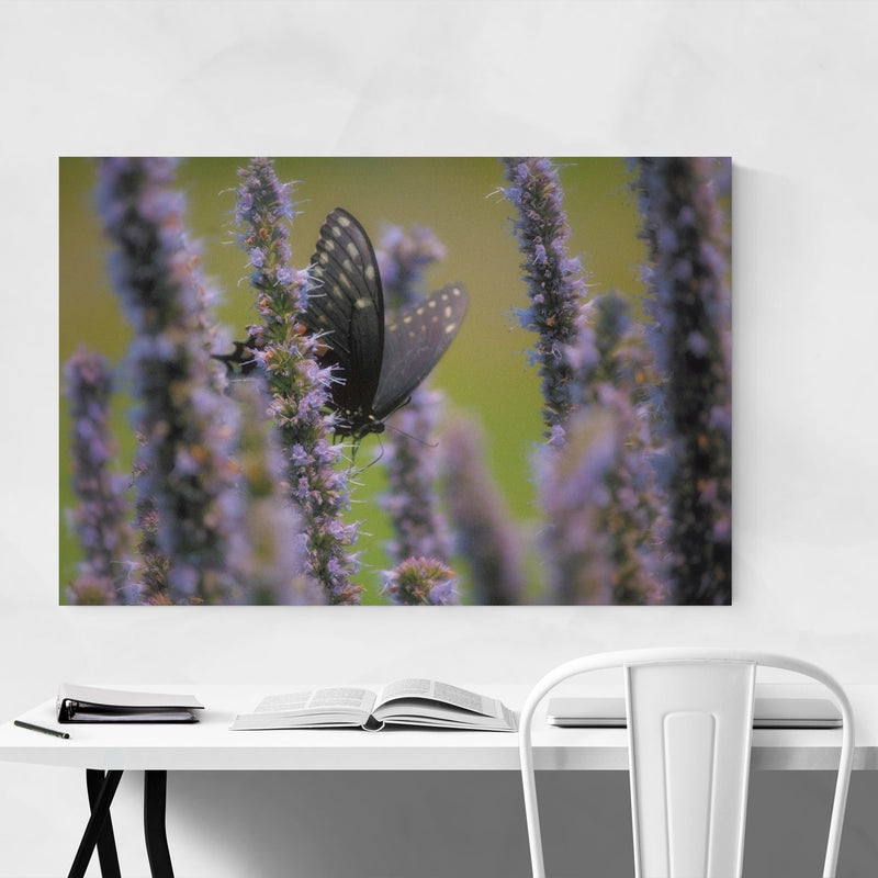 Swallowtail Butterfly Animal Metal Art Print