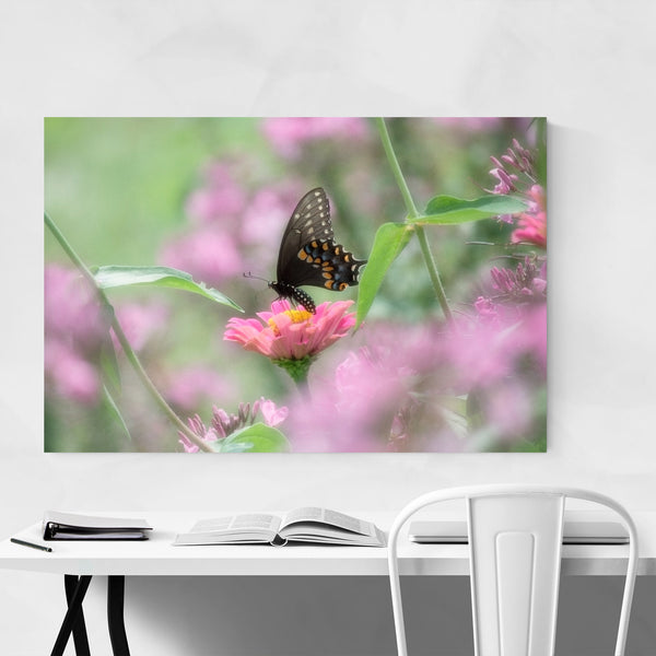 Swallowtail Butterfly Animal Art Print