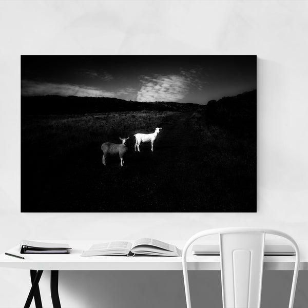 Sheep Morte Point England Rural Art Print