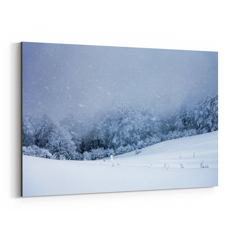 Bulgaria Mountain Winter Canvas Art Print