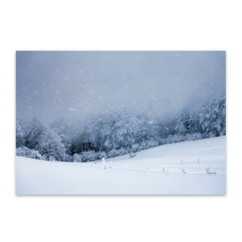 Bulgaria Mountain Winter Metal Art Print