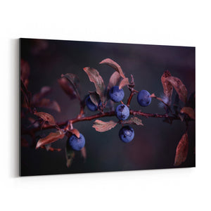 Blue Autumn Berries Photography Canvas Art Print