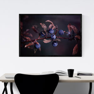 Blue Autumn Berries Photography Framed Art Print