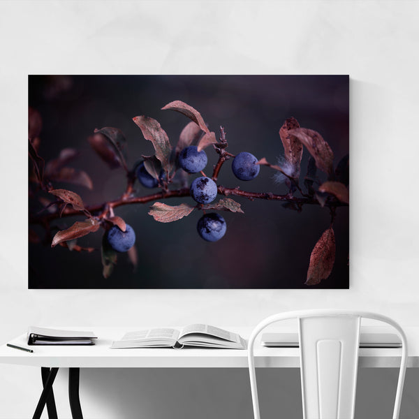 Blue Autumn Berries Photography Art Print