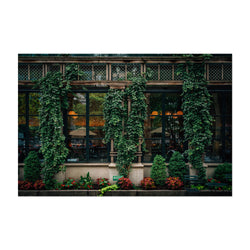 Bryant Park Midtown New York NYC Art Print