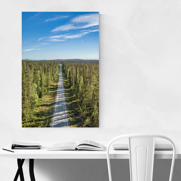 Aerial Forest Road Landscape Art Print