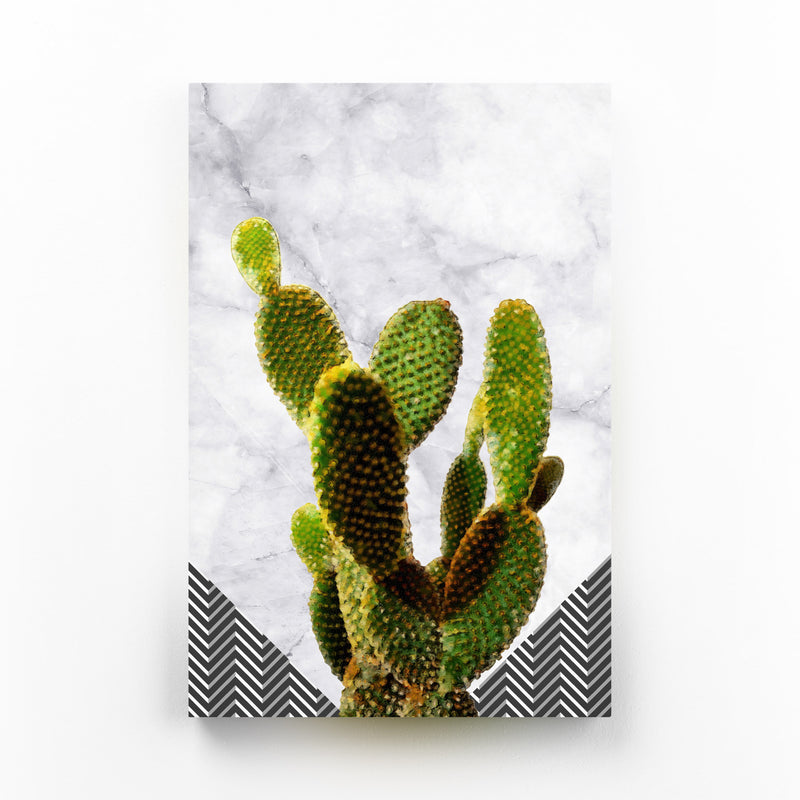 Cactus Plant Botanical Canvas Art Print