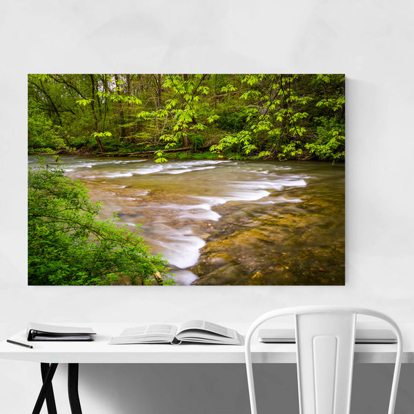 Pennsylvania River in Forest Art Print