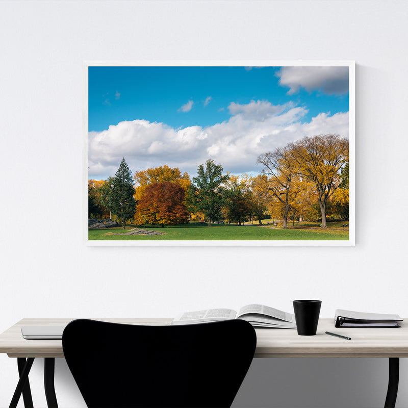 Central Park Autumn Color NYC Framed Art Print