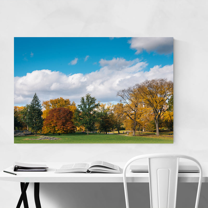 Central Park Autumn Color NYC Canvas Art Print